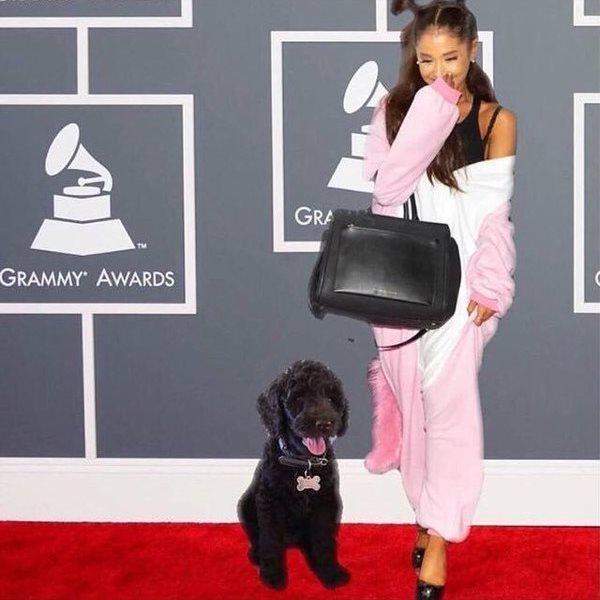 Ariana Grande - Pink Unicorn Kigurumi